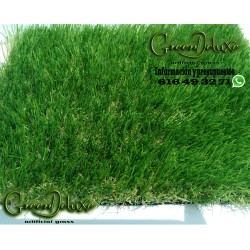 Kit-50m² Greendeluxe Niza premium 37